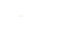 Hippe halfhoge sneaker van het Italiaanse Barracuda